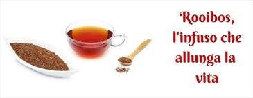 Rooibos, conosciamo le proprietà del tè rosso