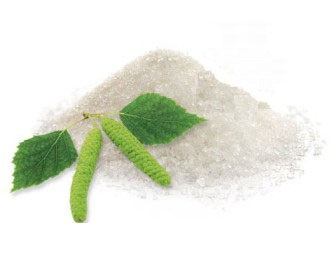 Zucchero di betulla o xilitolo