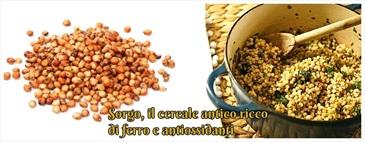 Sorgo, il cereale antico ricco di ferro e antiossidanti