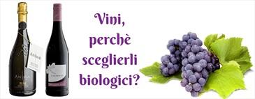 Vini, perchè sceglierli biologici?