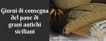 Da Biolis il pane di Pagnotta e Salute è sempre fresco!