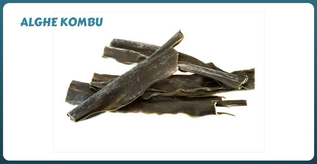 Le alghe kombu si usano in cottura con i legumi. alga-kombu-alghe-commestibili-proprietà-biolis