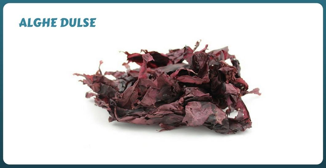 alga-dulse-come-cucinare-con-le-alghe