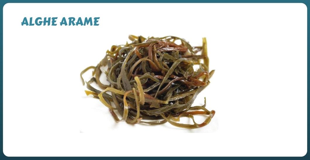 alghe-in-cucina-arame-biolis-negozio-bio-messina
