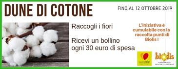 RACCOLTA BOLLINI SEKEM DUNE DI COTONE fino al 12/10/19